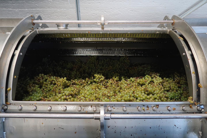 Astley Vineyard - winery